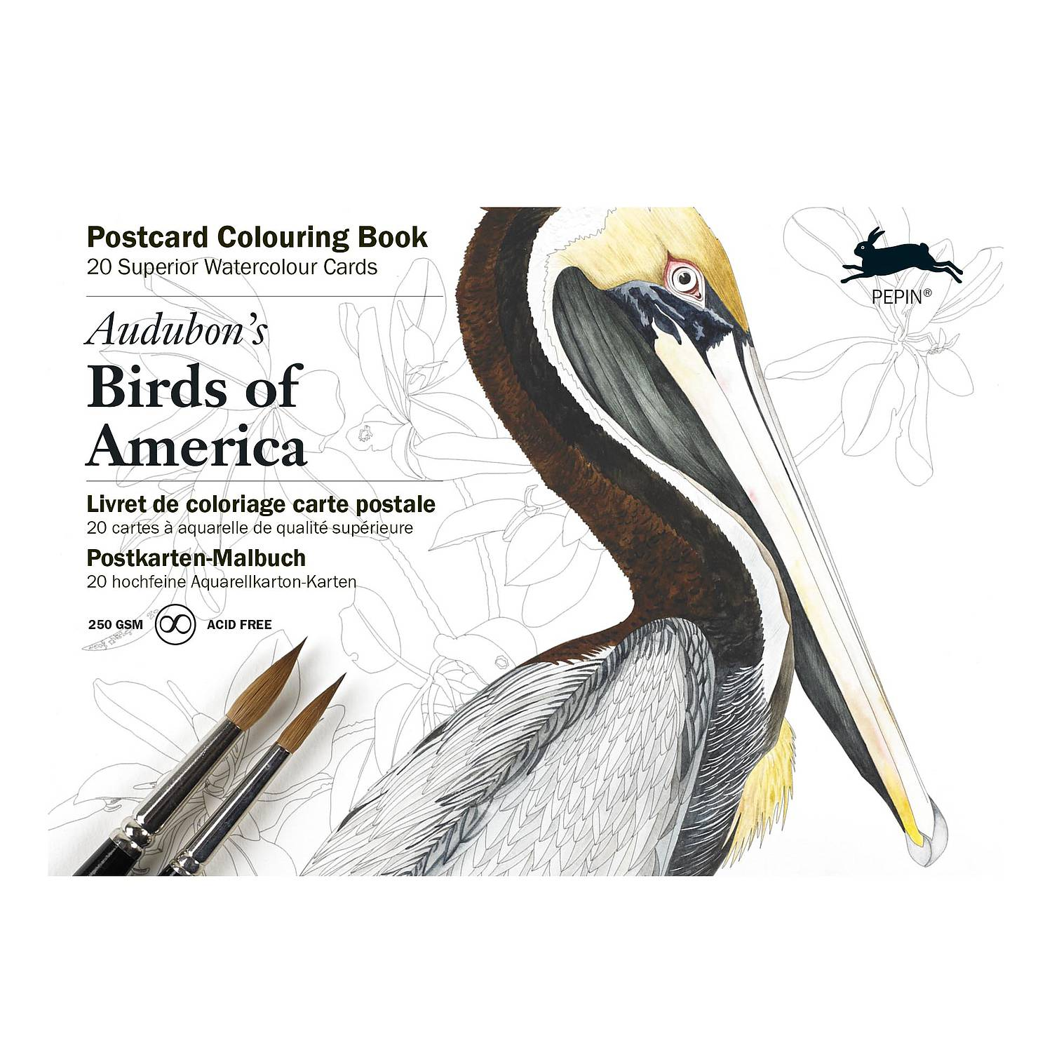 Postcard Colouring Book - Audubons Birds