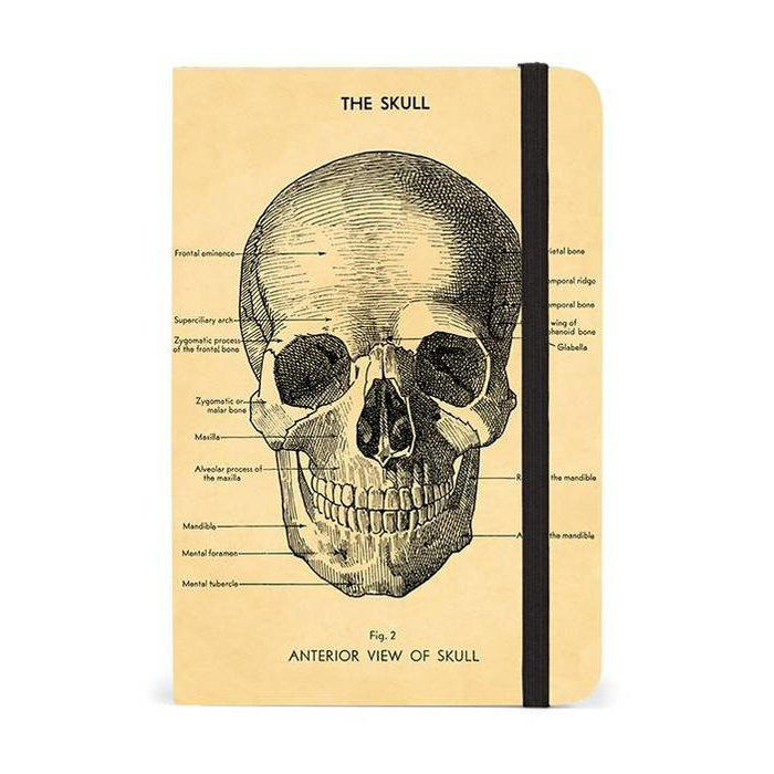 Notizbuch Small Skull